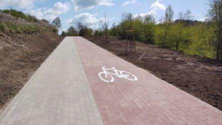 Ścieżka pieszo-rowerowa do Zalesia