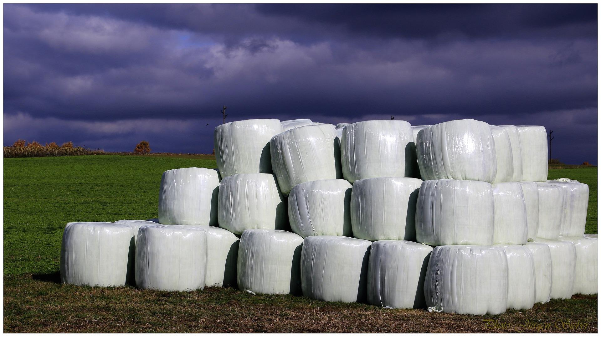 Usunięcie folii rolniczych z gospodarstwa