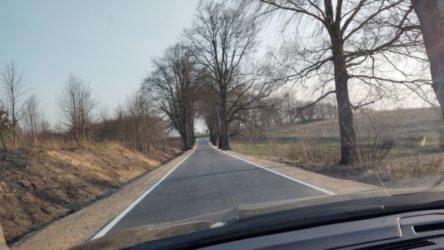 Droga do Zalesia
