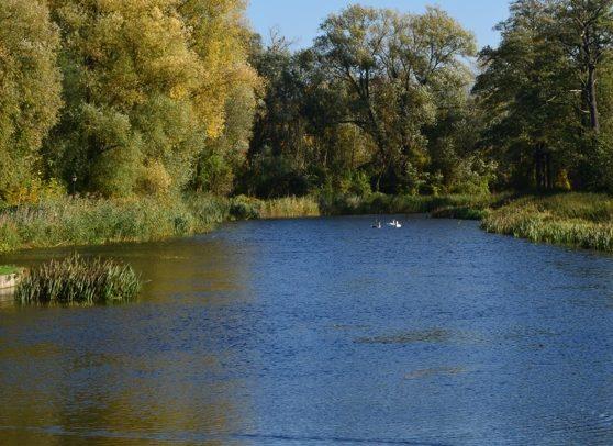 Zagospodarowanie brzegów rzeki Pisy