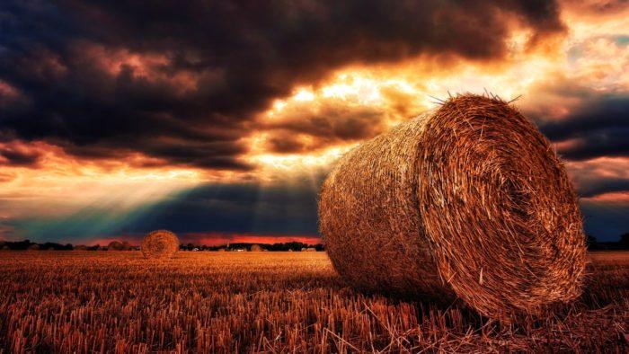 Zmiany w przepisach o ubezpieczeniu społecznym rolników