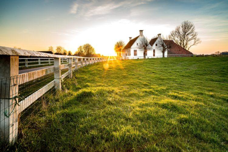 Czysta i piękna zagroda – estetyczna wieś 2021