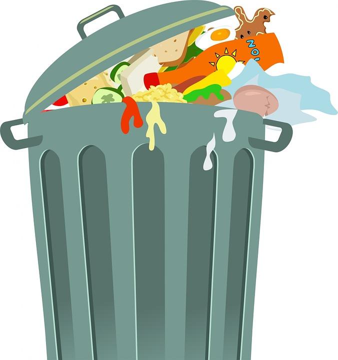 Segregacja odpadów BIO – ważne!